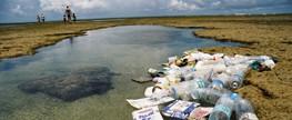 Lixo praias de Alagoas e Pernambuco