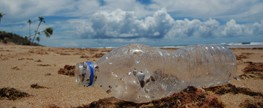 Garbage on the beaches of Alagoas and Pernambuco