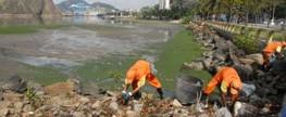 Diminui lixo retirado em limpeza na baía de Vitória