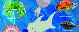 As espécies mais perigosas encontradas em nosso litoral