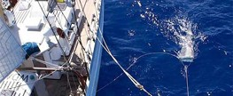 Lixo plástico forma mancha no Atlântico, diz estudo