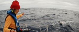 Researchers find plastic ocean trash in Sargasso Sea