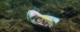 Empresa de cerveja organiza mutirão de limpeza