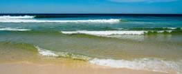 Praia Grande institui Dia Municipal da Limpeza