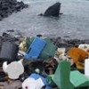 A 2nd garbage patch: Plastic soup seen in Atlantic