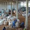 Brasil deve ganhar lei federal sobre manejo do lixo
