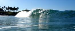 Mais Surf para um mundo melhor