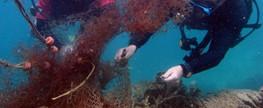 Blue View Divers Create Better Plastic Karma