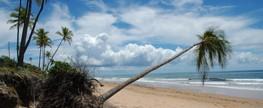 MMA realiza maratona de debates sobre gerenciamento costeiro