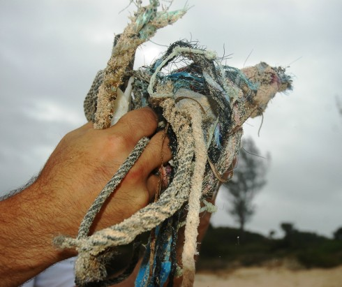 Beach debris from fishing vessels washed up on Nonsuch Island