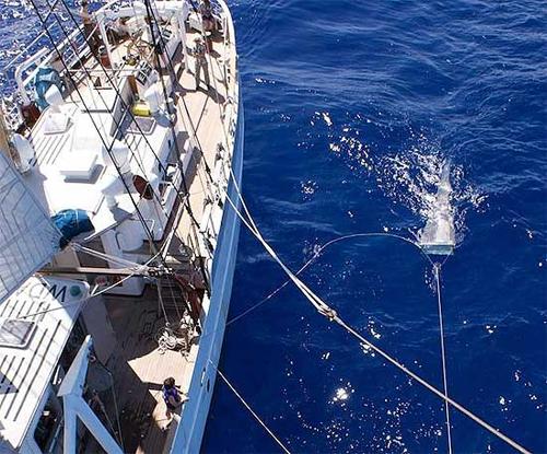 Cientistas e estudantes da SEA coletaram plásticos e outros resíduos marinhos em redes de malha fina. Foto: SEA/Divulgação