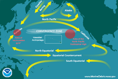 NOTE: This map is an oversiplification of ocean currents and features in the Pacific Ocean. There are numerous factors that affect the location, size, and strength of all of these features throughout the year, including seasonality and El Nino/La Nina. Depicting that on a static map is very difficult.
