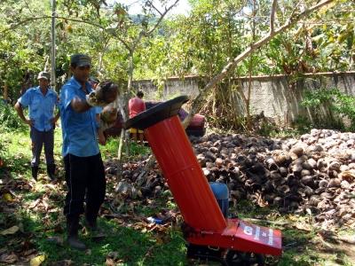 o coco é colocado na máquina e triturado