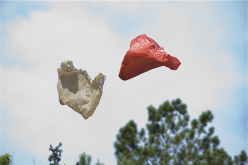 Plastic Bag By Ramin Bahrani