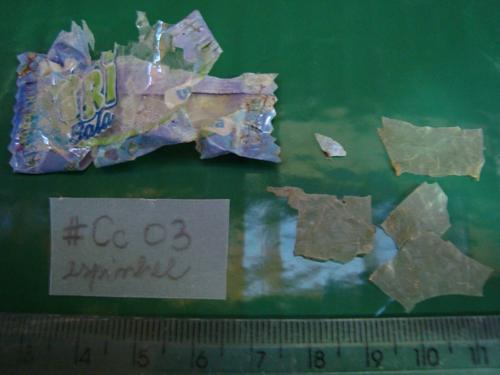 Lixo encontrado no trato gastrointestinal de uma tartaruga-cabeçuda. © Juliana Barros / NEMA
