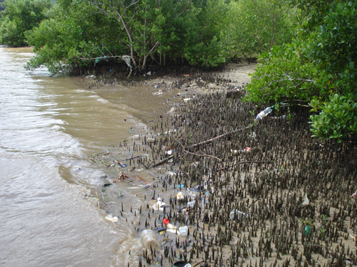 Diversos resíduos sólidos urbanos encalhados no manguezal. Pode-se observar como os resíduos se enroscam nos pneumatóforos e galhos dos mangues. © Bianca Pinto Vieira / Projeto Manguezal