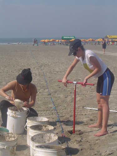 Procedimentos de coleta para avaliar a distribuição ao largo (vertical) de pellets numa praia da Enseada de Santos utilizando uma cavadeira tipo trado de 6' de diâmetro. © Juliana Teixeira