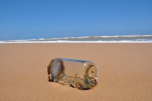Litoral norte (Costa dos Coqueiros) da Bahia. © Fabiano Prado Barretto/Global Garbage
