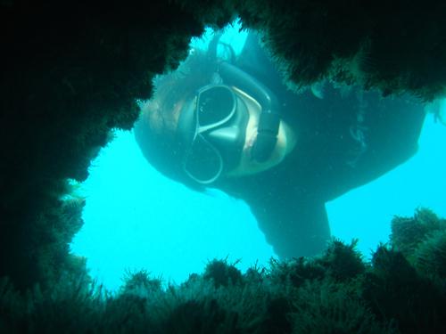 A artista visual Lica Moniz mergulha na área do naufrágio, na Barra, preparando o local para a intervenção artística. Crédito: Divulgação/Projeto Maraldi.