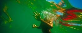 Impacto do lixo flutuante em animais marinhos em águas brasileiras