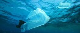 Lei municipal proibe a distribuição de sacolas plásticas em supermercados de Marmeleiro