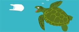 Plástico é uma ameaça às tartarugas