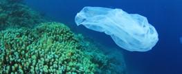 Governo assina pactos setoriais pela sustentabilidade