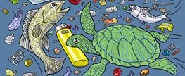 Biólogos e veterinários do RS se unem para salvar tartarugas que ingeriram lixo