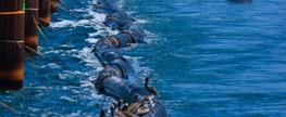 """Exercício de Combate à Poluição do Mar """"FOZ 2011"""""""