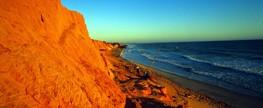 Praia limpa em Canoa Quebrada chama atenção para coleta de resíduos