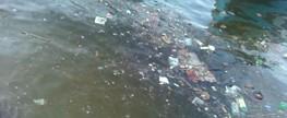 Sujeira e lixo na praia da Ribeira, na Cidade Baixa