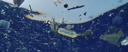 É preciso recuperar stocks de espécies e reduzir lixo no mar até 2020