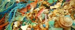 Prorrogadas inscrições para Certificação Praia Limpa