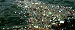 Projeto Catamarã recolhe 240 toneladas de lixo do mar