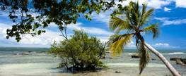 Turista francesa é encontrada ferida em praia na Bahia